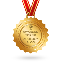 Zoology Blogs
